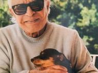 Cid Moreira diz que cachorras foram mortas por vingança