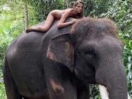 Modelo recebe críticas por posar nua com elefante raro