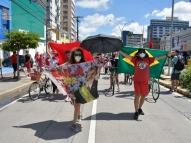 Bandeira do Brasil é símbolo de ato no Recife: 'é nossa'