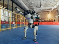 Robôs dançarinos viralizam em vídeo