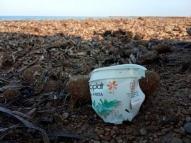 Copo de iogurte das Olimpíadas de 76 é achado em praia
