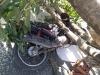 Árvore cai em cima de motociclista na Zona Norte do Recife