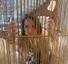 'Atrás das grades', esposa de Moro reflete sobre corrupção