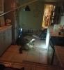 Jacaré de 3,5 metros invade residência e destrói cozinha