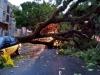 Sul: ciclone deixa rastro de destruição e mata 10 pessoas